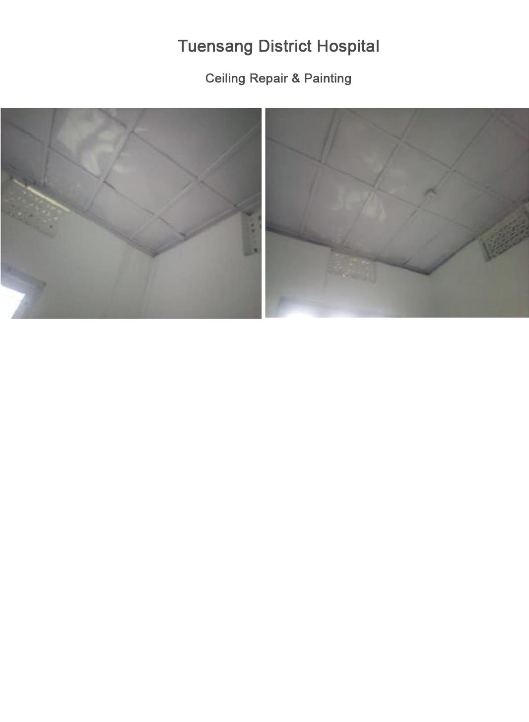 Ceiling-Repair-