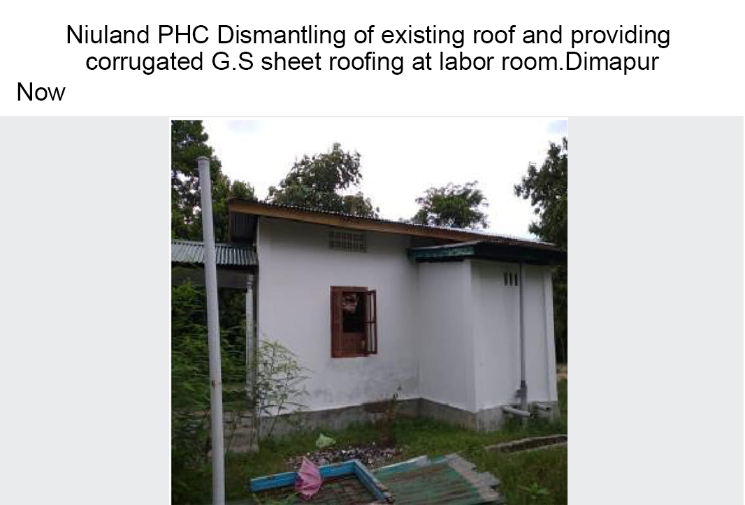 Niuland-PHC-Dismantling-of-existing-roof-and-providing-now
